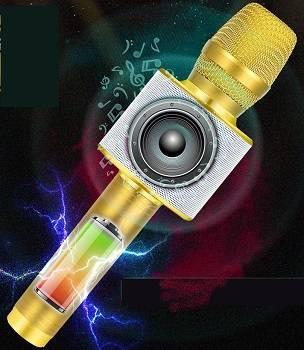 BONAOK 2019 Upgraded Bluetooth Wireless Karaoke Microphone review
