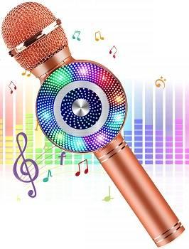 FishOaky Wireless Bluetooth Karaoke review